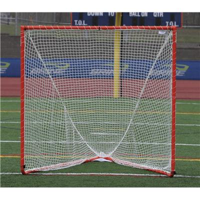 Brine High School Goal W/ Net