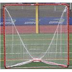 Brine Backyard Practice Goal