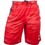 Under Armour Cornell Raid Shorts [MENS]