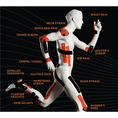 The Human Body (KT Tape Pro Athletic Body Tape)