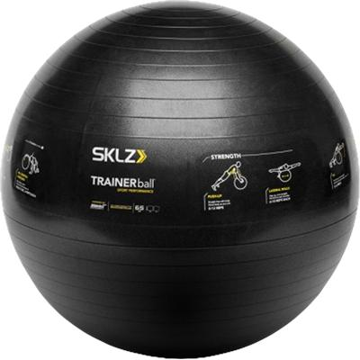 16 Exercises Printed On It (SKLZ TRAINERball Sport Performance Stability Ball)