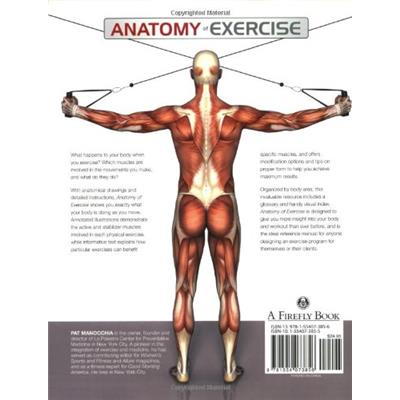Back View (Anatomy Of Exercise: A Trainer's Inside Guide to Your Workout)