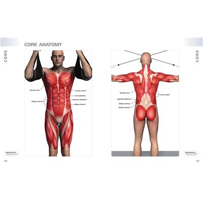 Anatomy Of Exercise (Anatomy Of Exercise: A Trainer's Inside Guide to Your Workout)